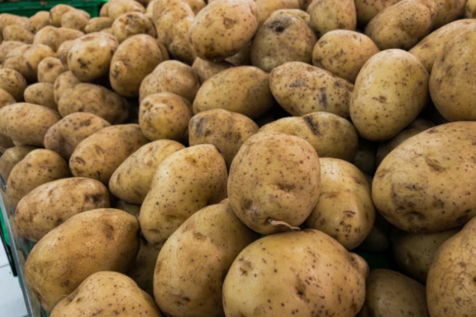 Nowa regulacja w zakresie znakowania pochodzenia ziemniaków (wideo)