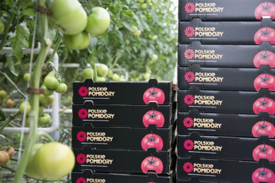 Citronex wyda 60 mln euro na uruchomienie produkcji ekologicznych pomidorów na Mazowszu