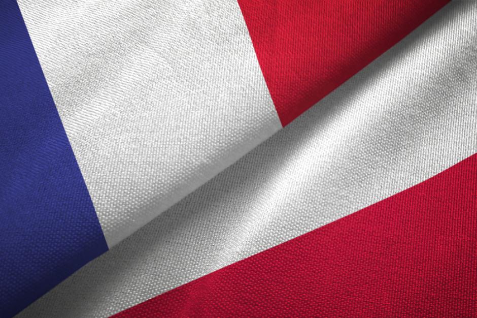Przedsiębiorstwa francuskie w Polsce najwięcej inwestują w obszarze handlu i w przemyśle