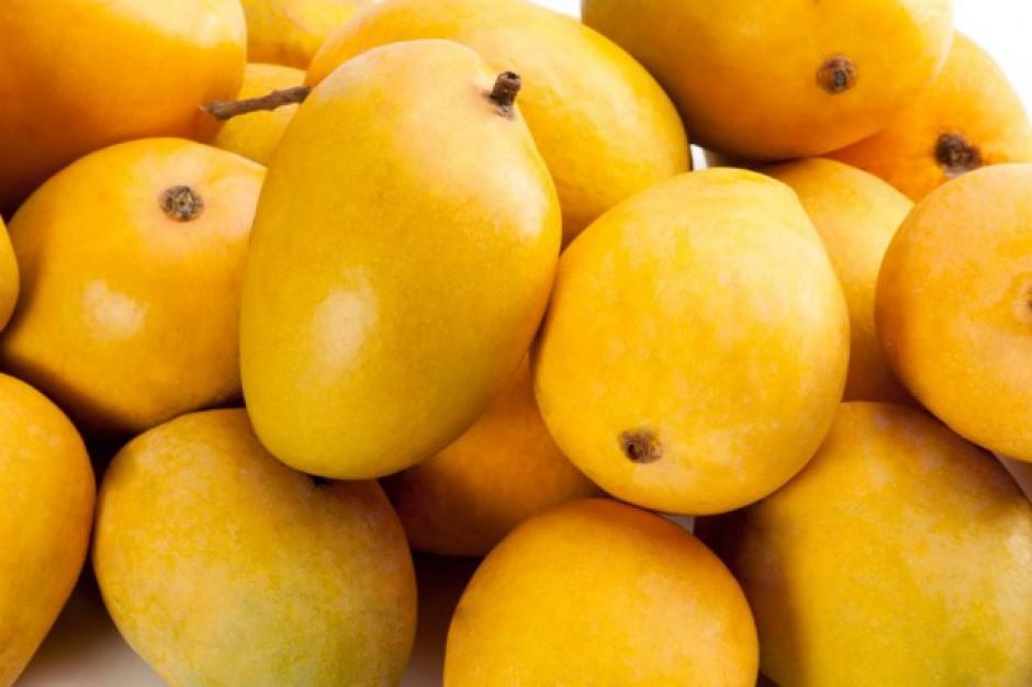 Filipiny mają problem z nadmiarem mango