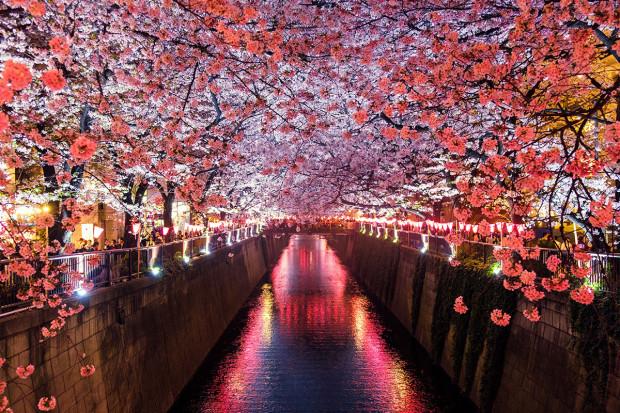 EPA szansą na bliższą współpracę gospodarczą z Japonią