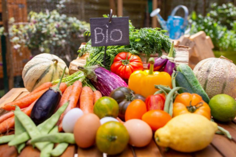 W 2018 r. powierzchnia upraw ekologicznych we Francji wzrosła o 17 proc.