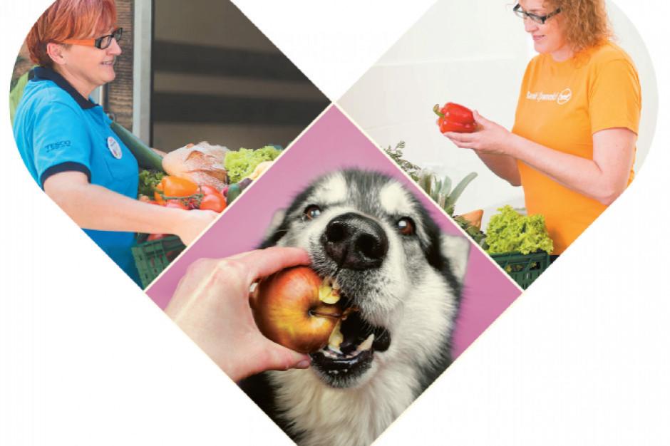 Tesco oddaje żywność organizacjom wspierającym zwierzęta