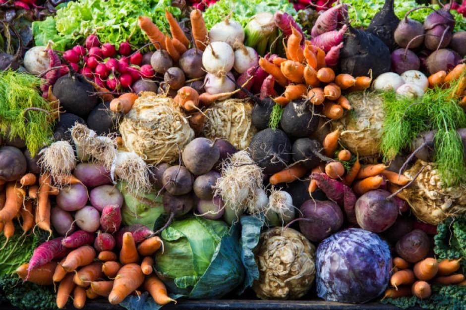 Bronisze: Ceny warzyw porównywalne z rokiem ubiegłym
