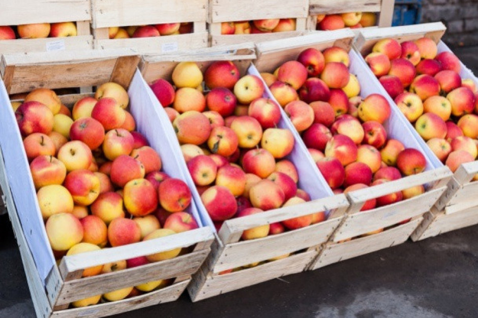 Polskie jabłka zakazane w rosyjskiej sieci