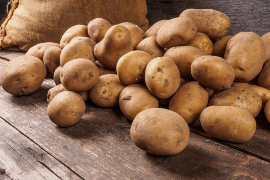 GUS: w maju ziemniaki na targowiskach droższe o 138 proc. niż rok temu