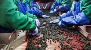 Ekonomiczny poniedziałek: Sektor rolno-spożywczy w obliczu braków kadrowych
