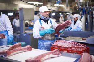 Zdjęcie numer 5 - galeria: Mięso na wtorek: Z wizytą u belgijskich dostawców mięsa (zdjęcia)