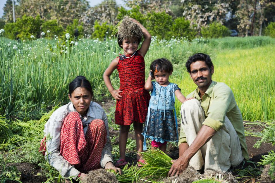 Indie: W 2022 roku  ponad 30 proc. dzieci będzie wciąż niedożywionych