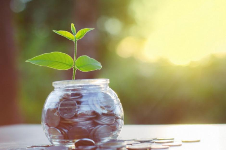 Hortico wypłaci 5 groszy dywidendy na akcję
