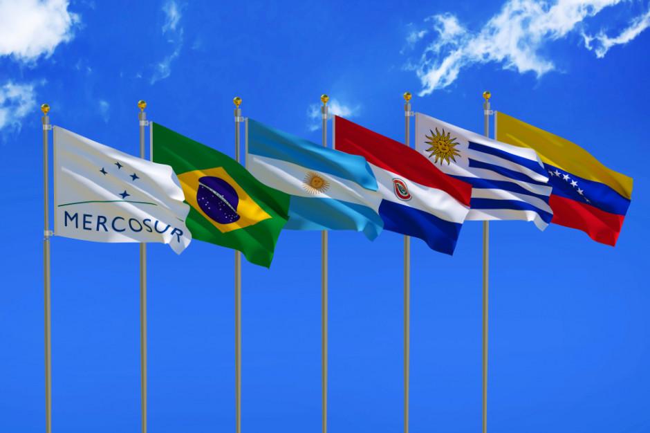 Mięso na wtorek: Dlaczego umowa UE z Mercosur to zła wiadomość dla branży?