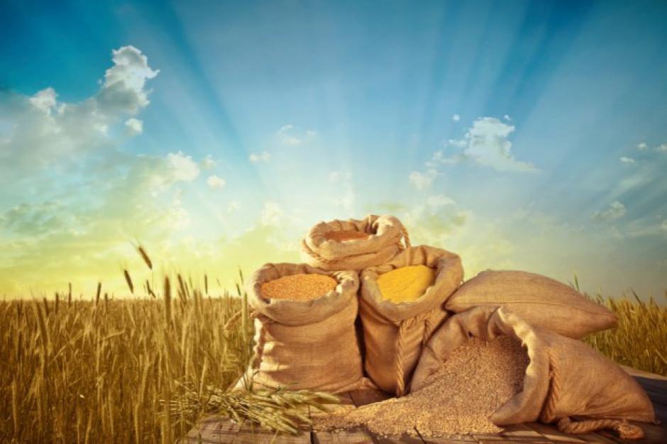 Na Ukrainie zebrano 2,7 mln ton zbóż