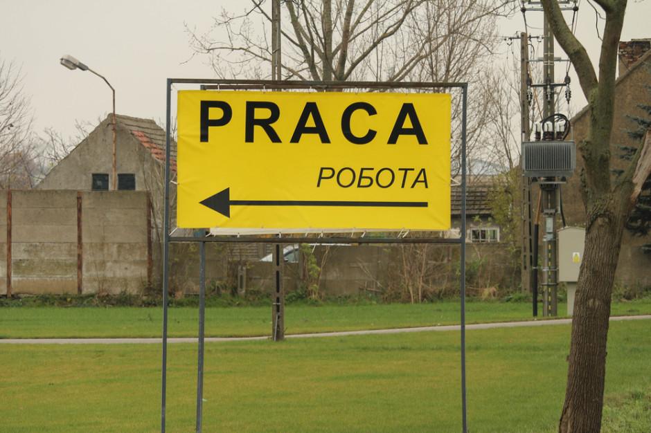 Ukraińscy pracownicy chcieliby wyjechać z Polski do Niemiec, ale nie spełniają wymogów  (raport)