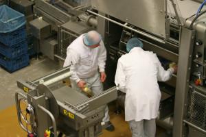 Zdjęcie numer 5 - galeria: Traysealer Ishida zwiększa efektywność producji pyz ziemniaczanych (schładzanych)