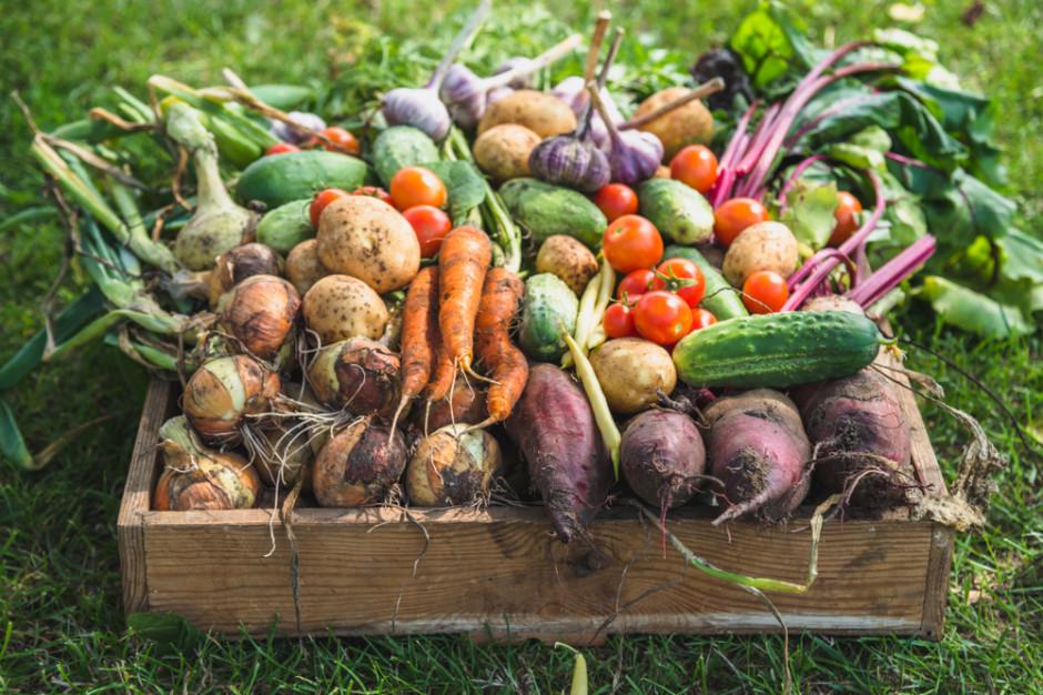 Ekspert: Na rynku hurtowym w Broniszach brakuje warzyw korzeniowych