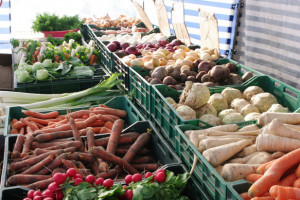 Allium: Rynek warzyw będzie oporny na regulacje