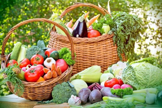 Susza: Znaczny spadek zbiorów owoców i warzyw. Pomoc dla rolników
