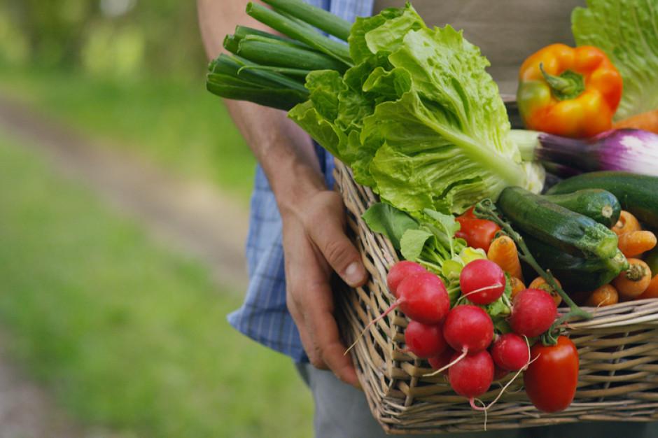 Ekonomiczny poniedziałek: Susza rolnicza - mniejsze zbiory, wyższe ceny
