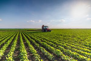 Rolnictwo odpowiada za 10 procent polskiej emisji gazów cieplarnianych (wideo)