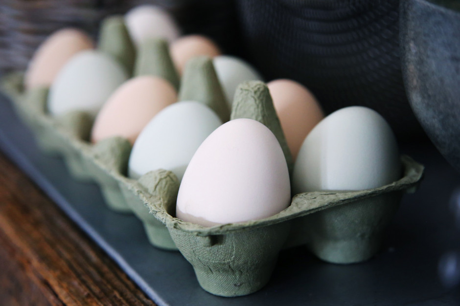 Polska w ogonie produkcji jaj ekologicznych
