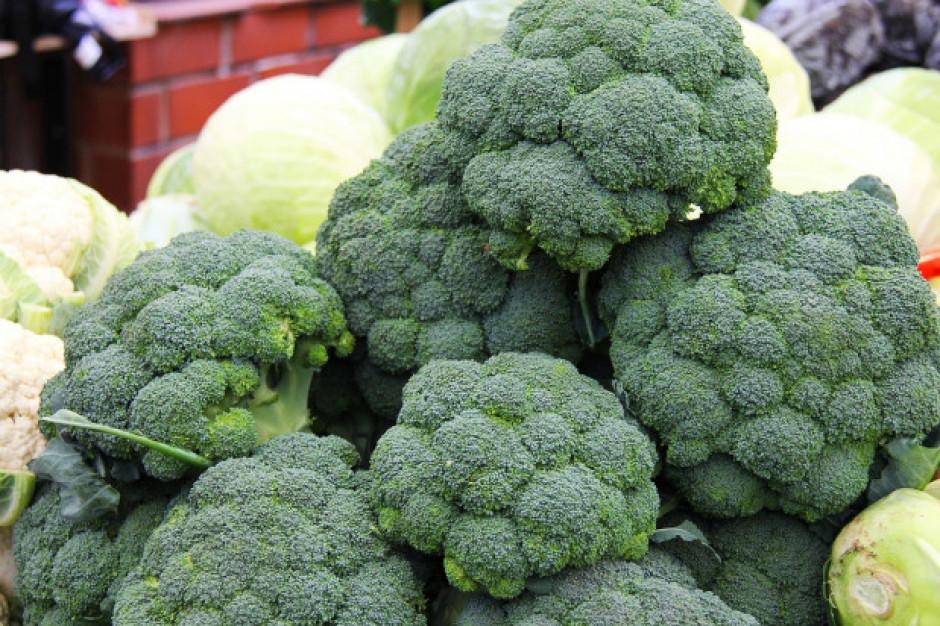 Wielka Brytania: Kryzys na rynku warzyw. Brakuje kalafiorów, kapusty i brokułów