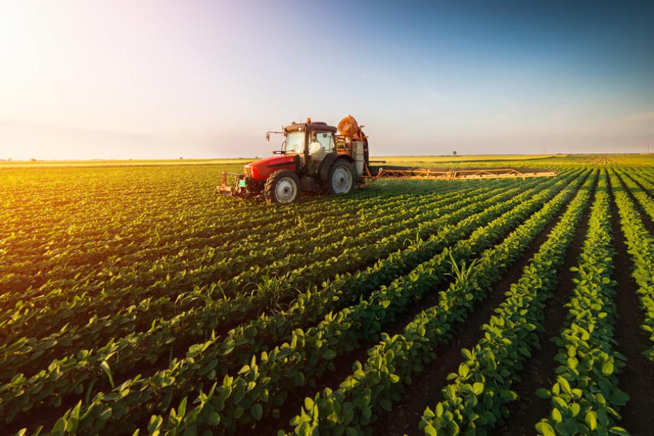 Europejska Agencja Środowiska: Zmiany klimatu zagrażają rolnictwu w UE