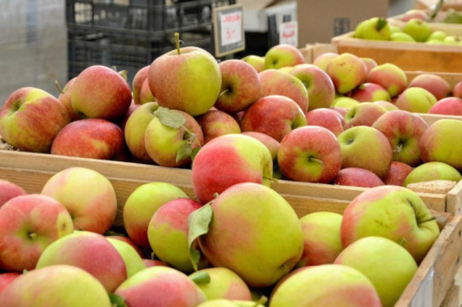 UE wstrzymała dostawy warzyw i owoców z Ukrainy