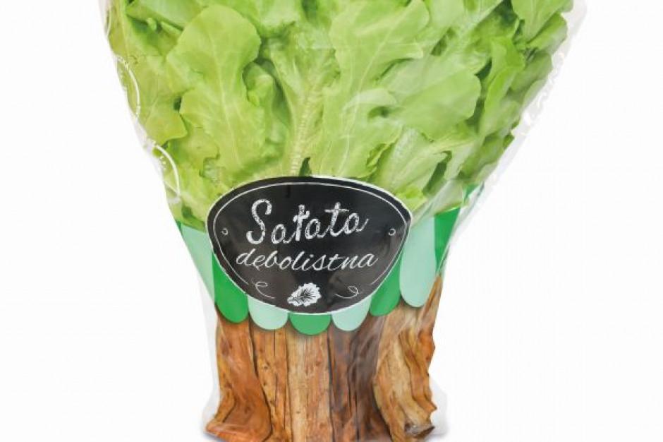 Netto wycofuje plastikowe doniczki na sałatę