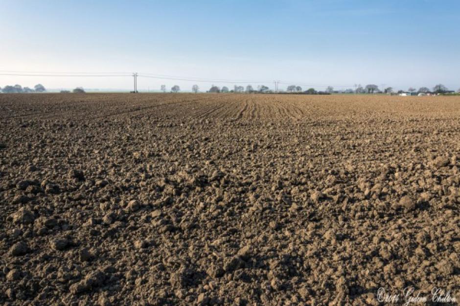 Kandydat PiS do Sejmu chce utrzymania ograniczeń w sprzedaży ziemi rolnej cudzoziemcom