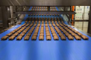 Zdjęcie numer 8 - galeria: Mondelez stawia na Harmony, czyli pozyskiwanie pszenicy do produkcji ciastek z troską o środowisko naturalne