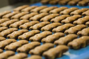 Zdjęcie numer 10 - galeria: Mondelez stawia na Harmony, czyli pozyskiwanie pszenicy do produkcji ciastek z troską o środowisko naturalne