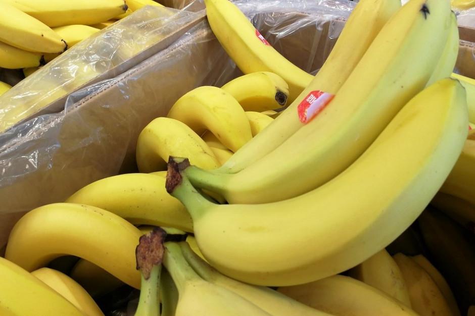 Banany mogą zdrożeć nawet o 50 proc.