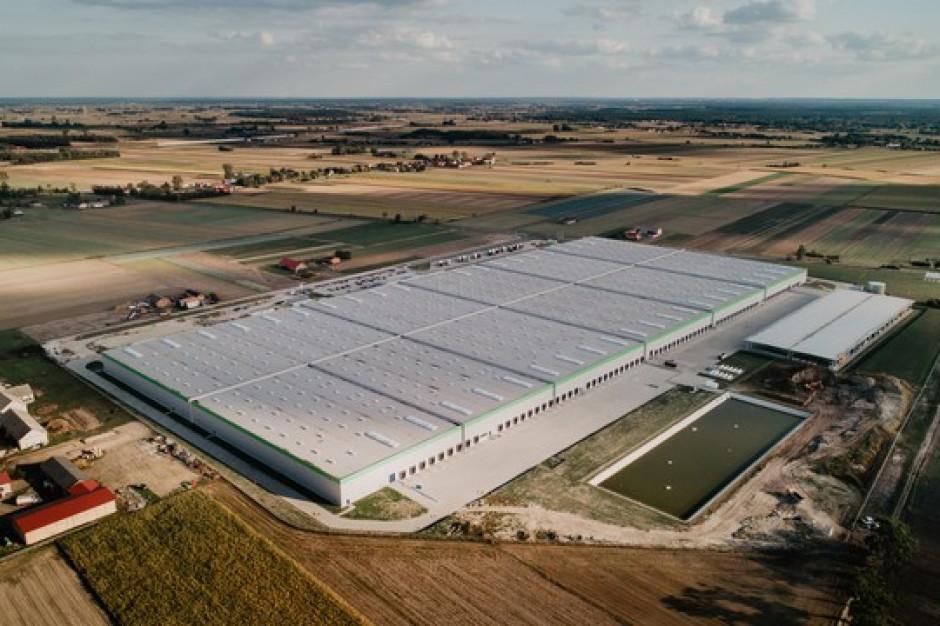 Panattoni wybudował rekordowy w Polsce big box dla Leroy Merlin