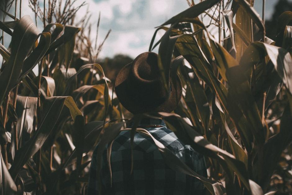 E-learning szansą dla polskiego rolnictwa?