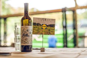 Zdjęcie numer 5 - galeria: Casualowy piątek: Winnica Srebrna Góra - chcemy produkować coraz lepsze wina (zdjęcia)