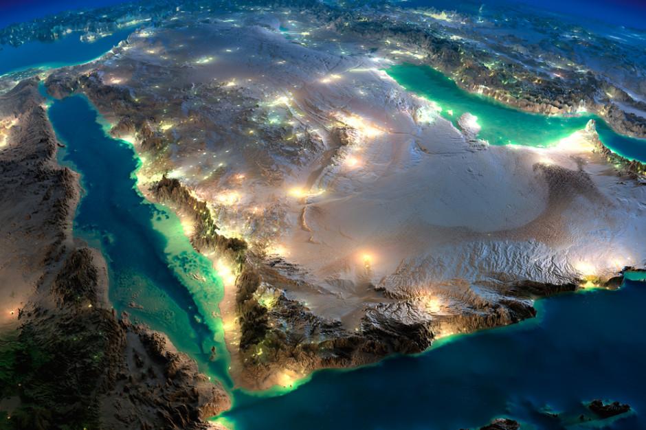 Brazylijczycy uruchomią pierwszą przetwórnię drobiu w Arabii Saudyjskiej