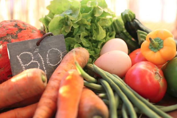 Farma Świętokrzyska: rynek żywności ekologicznej w Polsce rośnie dzięki sieciom handlowym