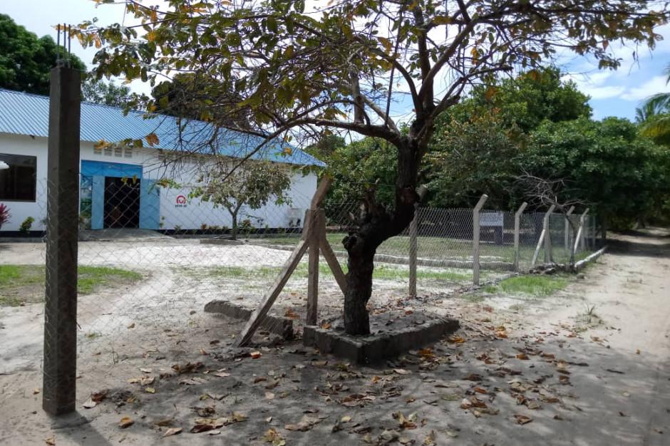 Rozwój sektora przetwórstwa orzechów nerkowca w Tanzanii