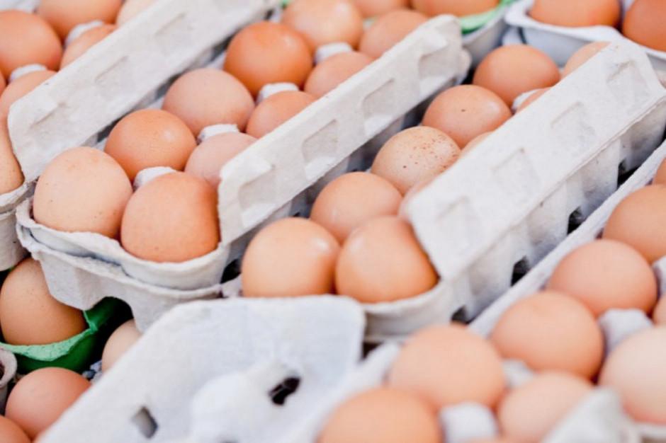GIS ostrzega przed salmonellą w jajach z Fermy Drobiu