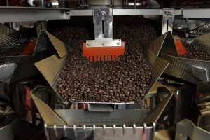 Zdjęcie numer 1 - galeria: Illy - wyborna kawa na start z Ishidą