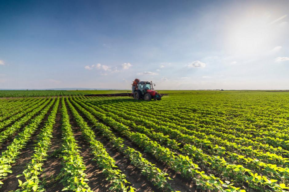 Włoskie rolnictwo coraz częściej stawia czoła skrajnym zjawiskom