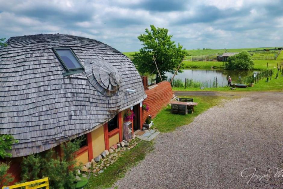 Firma Eko Snails Garden wystawiona na sprzedaż (zdjęcia)