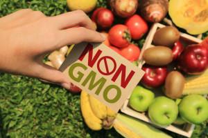 Nowe przepisy w sprawie żywności bez GMO mogą wprowadzać konsumentów w błąd? (wideo)