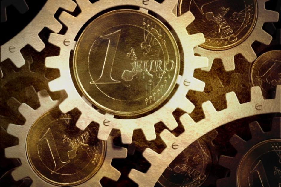 Polski biznes traci wiarę w euro