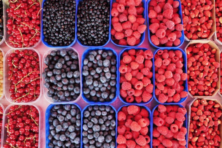 Udany sezon dla superowoców jagodowych z Polski