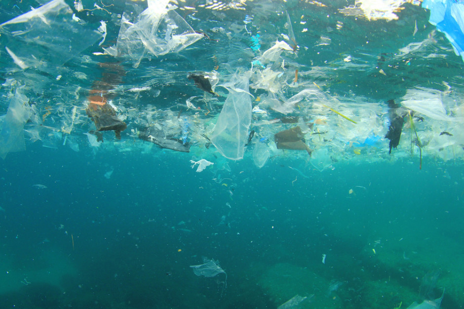 Deloitte: Zanieczyszczenie wód plastikiem generuje straty dla gospodarki
