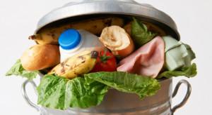 Aplikacja Too Good To Go radzi jak ograniczyć marnowanie jedzenia