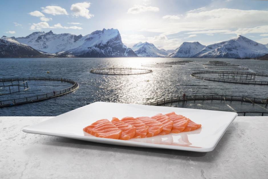 Norwescy hodowcy: Mniej niż 1 proc. naszych łososi jest leczonych antybiotykami
