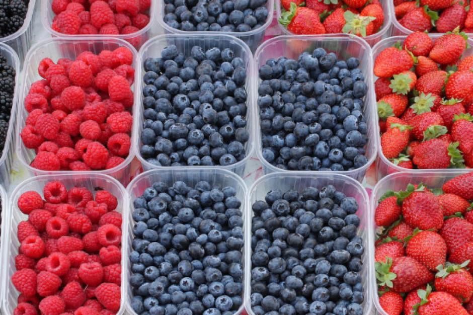 Produceni jagodowych namawiają do konsumpcji owoców oraz przetworów