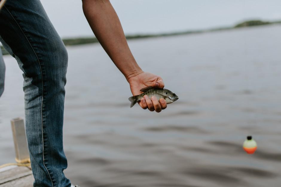 Zatrzymano kłusowników łowiących ryby przy pomocy petard